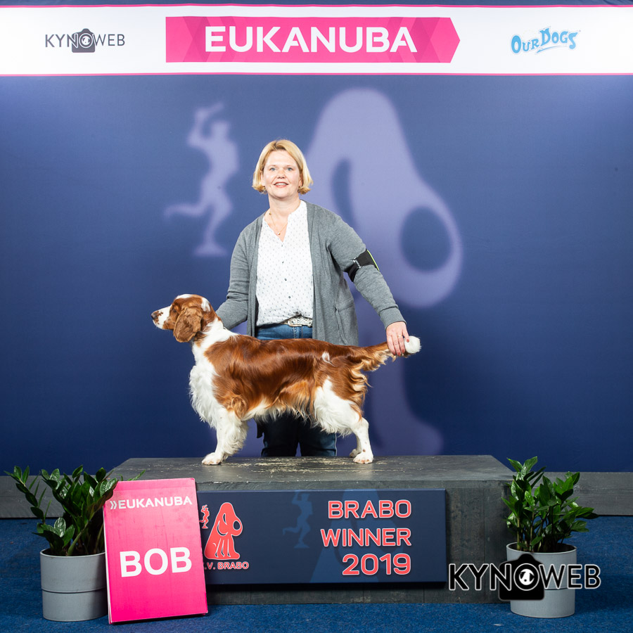 BEST_OF_BREED_959_LR_ANTWERPEN_2019_KYNOWEB_KY3_9118_20190414_12_10_13 (1)